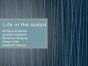 Life in the ocean groups names Kentavious belcher