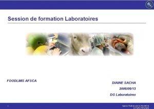 Session de formation Laboratoires FOODLIMS AFSCA DIAINE SACHA
