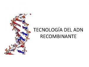 TECNOLOGA DEL ADN RECOMBINANTE QU ES LA TECNOLOGA