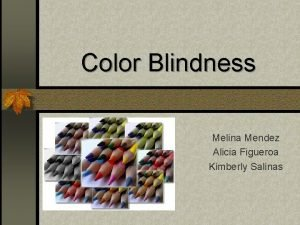 Color Blindness Melina Mendez Alicia Figueroa Kimberly Salinas