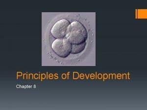 Principles of Development Chapter 8 Fertilization The union