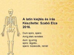 A latin kiejts s rs Ksztette Szab Elza