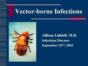 Vectorborne Infections Allison Liddell M D Infectious Diseases