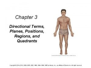 Chapter 3 Directional Terms Planes Positions Regions and