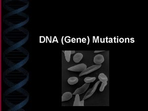 DNA Gene Mutations What is a gene mutation