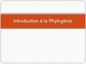 Introduction la Phylognie Table des matires Introduction la