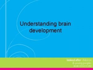Understanding brain development Early brain development The brain