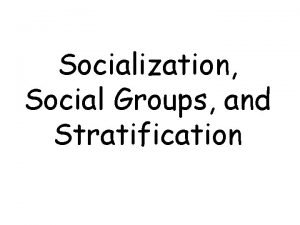 Socialization Social Groups and Stratification Socialization The process