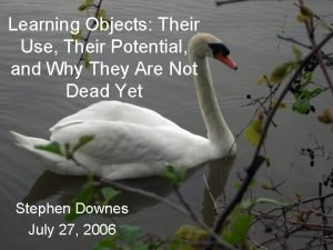 Learning Objects Their Use Their Potential and Why