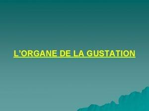 LORGANE DE LA GUSTATION LORGANE DE LA GUSTATION