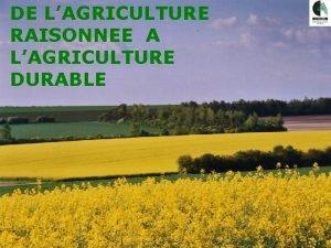 Sminaire Agriculture Raisonne DE LAGRICULTURE RAISONNEE A LAGRICULTURE