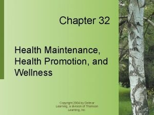 Chapter 32 Health Maintenance Health Promotion and Wellness