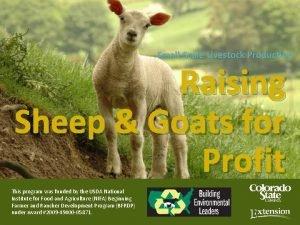 SmallScale Livestock Production Raising Sheep Goats for Profit