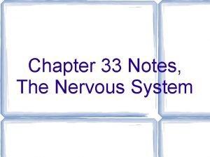 Chapter 33 Notes The Nervous System Nervous System