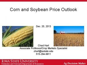 Corn and Soybean Price Outlook Dec 20 2013