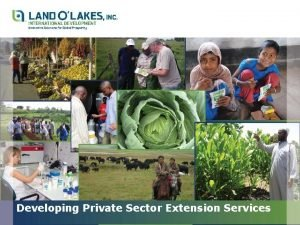 Developing Private Sector Extension Services Outline Developing Private