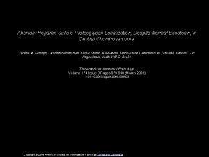 Aberrant Heparan Sulfate Proteoglycan Localization Despite Normal Exostosin