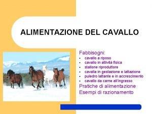 ALIMENTAZIONE DEL CAVALLO Fabbisogni cavallo a riposo cavallo