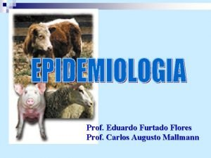 Prof Eduardo Furtado Flores Prof Carlos Augusto Mallmann