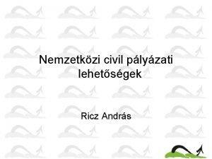 Nemzetkzi civil plyzati lehetsgek Ricz Andrs Nemzetkzi plyzatok