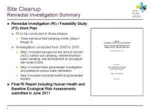 Site Cleanup Remedial Investigation Summary Remedial Investigation RI