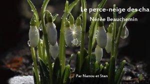 Le perceneige des cham Nre Beauchemin Par Nanou