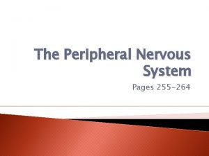 The Peripheral Nervous System Pages 255 264 Peripheral