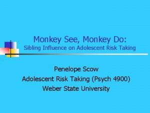 Monkey See Monkey Do Sibling Influence on Adolescent