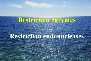 Restriction enzymes Restriction endonucleases Restriction enzymes Are enzymes