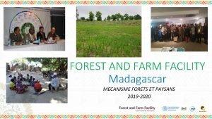 FOREST AND FARM FACILITY Madagascar MECANISME FORETS ET