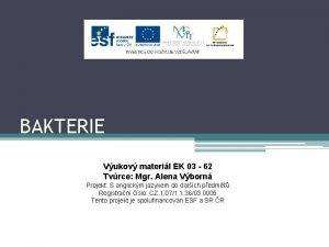 BAKTERIE Vukov materil EK 03 62 Tvrce Mgr