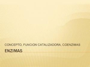 CONCEPTO FUNCION CATALIZADORA COENZIMAS CONCEPTO Las enzimas son