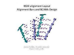 NSW alignment Layout Alignment Bars and BCAMs Design