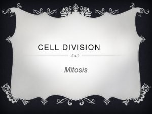 CELL DIVISION Mitosis WHAT IS MITOSIS v Part