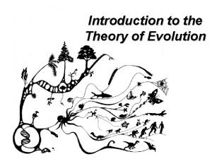 Introduction to the Theory of Evolution Why Theory