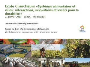 Ecole Chercheurs Systmes alimentaires et villes interactions innovations