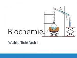 Biochemie Wahlpflichtfach II Konzepte zum Kurs Biochemie 3