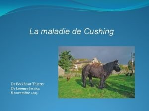 La maladie de Cushing Dr Eeckhout Thierry Dr