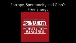 Entropy Spontaneity and Gibbs Free Energy Entropy Entropy