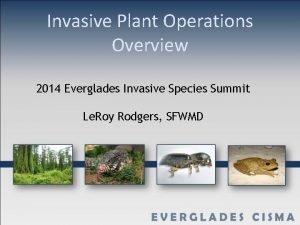 Invasive Plant Operations Overview 2014 Everglades Invasive Species