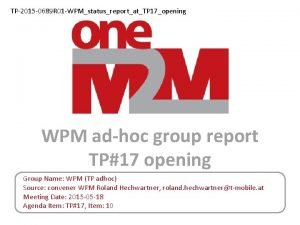 TP2015 0689 R 01 WPMstatusreportatTP 17opening WPM adhoc