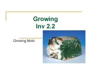 Growing Inv 2 2 Growing Mold a 1