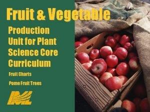 Fruit Vegetable Production Unit for Plant Science Core