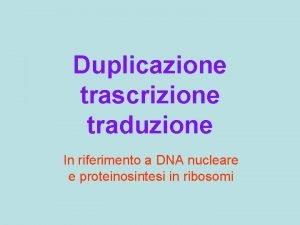 Duplicazione trascrizione traduzione In riferimento a DNA nucleare