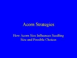 Acorn Strategies How Acorn Size Influences Seedling Size