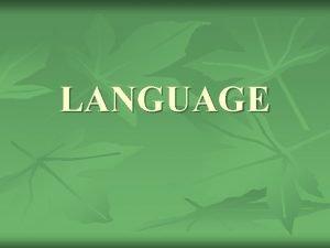 LANGUAGE Language Culture n n Language is a