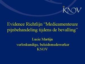 Evidence Richtlijn Medicamenteuze pijnbehandeling tijdens de bevalling Lucie