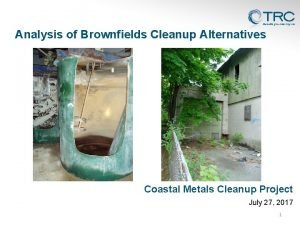 Analysis of Brownfields Cleanup Alternatives Coastal Metals Cleanup