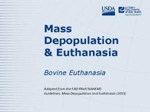 Mass Depopulation Euthanasia Bovine Euthanasia Adapted from the