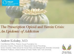 The Prescription Opioid and Heroin Crisis An Epidemic
